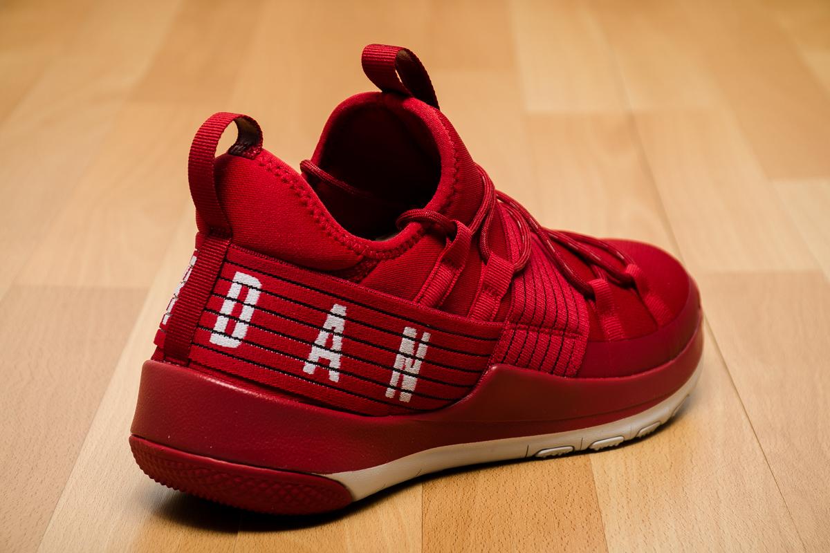 air jordan trainer pro training shoes